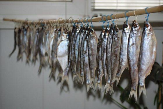Условия хранения вяленой рыбы