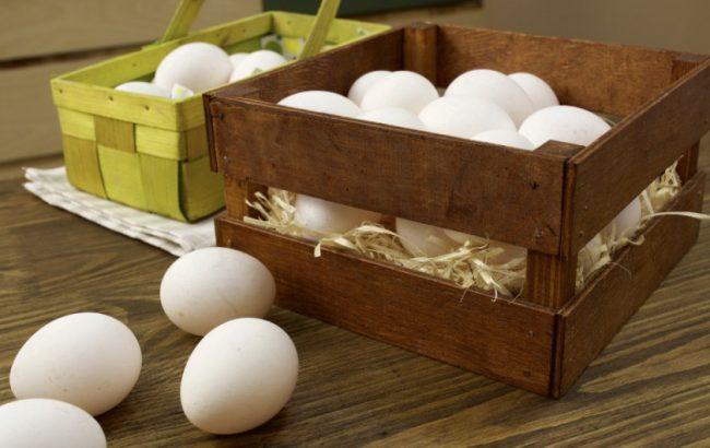 Правила хранения яиц в домашних условиях