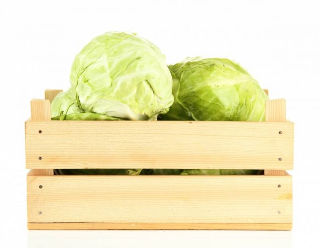 Как правильно хранить капусту в зиму?