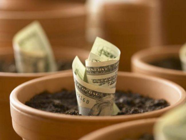 Где надежней всего хранить деньги?